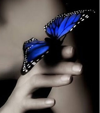 efecto_mariposa